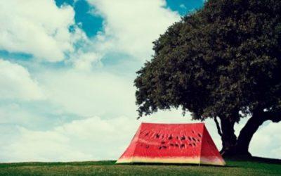 Tende Flysheets della FieldCandy: la fantasia nelle tende canadesi da campeggio