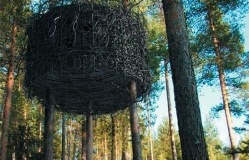 albergo sugli alberi