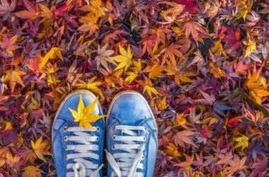 7 cose da fare in autunno con tutta la famiglia