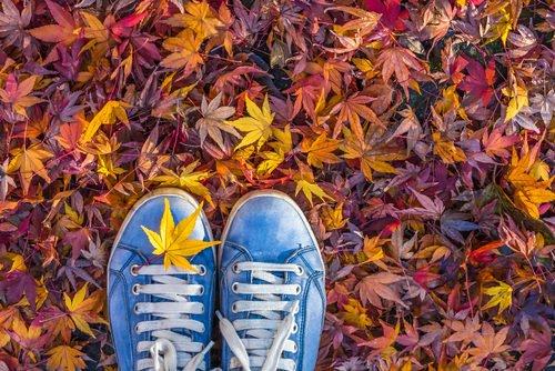 cose da fare in autunno