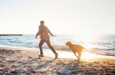 Cani in spiaggia: diritti e doveri degli animali e dei loro padroni