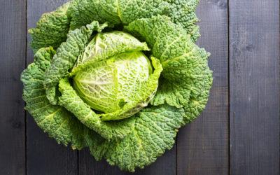Proprietà della verza e benefici per la salute, ma anche qualche controindicazione