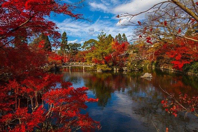 giardino giappponese zen