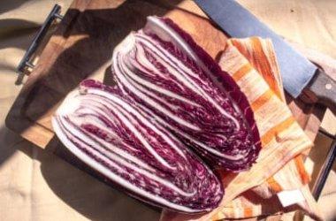Radicchio: proprietà e usi in cucina