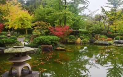 Il Giardino Giapponese Zen Alcune Informazioni Di Base Tuttogreen