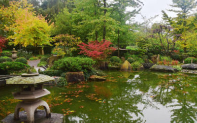 Giardino giapponese zen: cos'è e come si crea