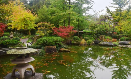 Photo of Giardino giapponese zen: cos'è e come si crea