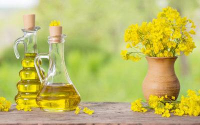 Olio di canola: da dove si ottiene e proprietà nutrizionali