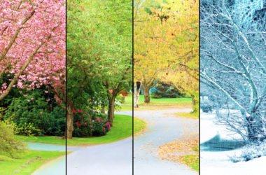 Cambio di stagione: come affrontarlo al meglio