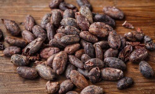 Cacao: storia, valori nutrizionali e proprietà