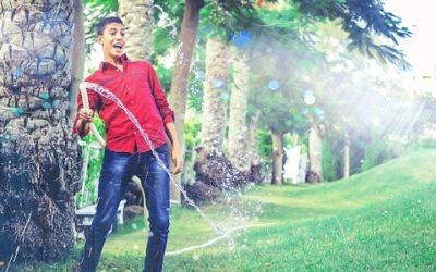 Giardiniere: mansioni, competenze e sbocchi professionali