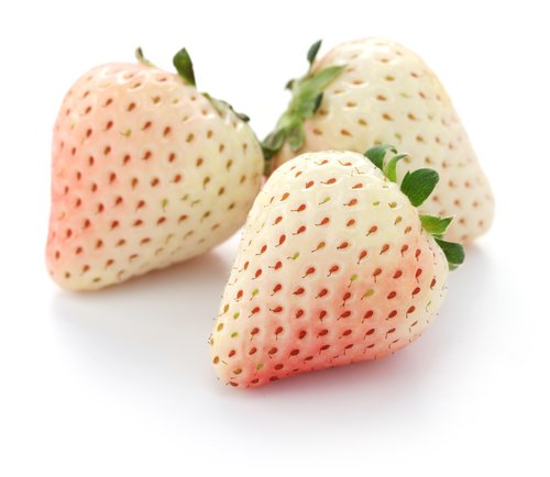 Photo of Pineberry, la fragola che pare incrociata con l'ananas e che puoi coltivare anche tu