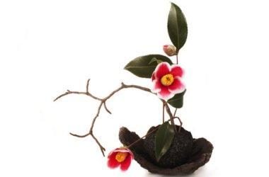 Ikebana, la filosofia e la pratica dell'arte giapponese di composizione dei fiori