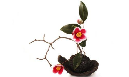 Photo of Ikebana, la filosofia e la pratica dell'arte giapponese di composizione dei fiori