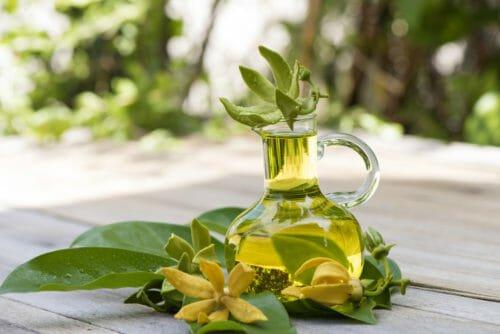 olio di ylang ylang