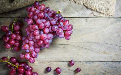 Tutto sull'uva e sulla vite, come si coltiva, le proprietà ed i benefici e gli utilizzi in cucina