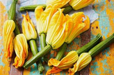 Come preparare i fiori di zucchina ripieni di ricotta