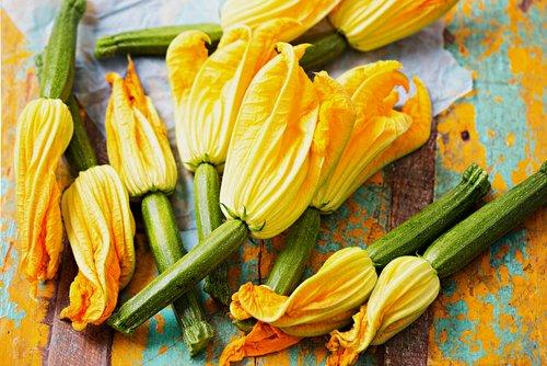Ricetta dei fiori di zucchina ripieni di ricotta