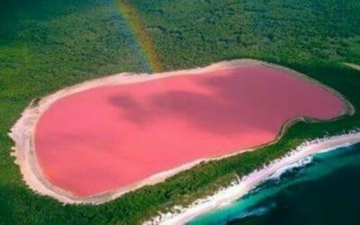 Laghi rosa nel mondo: un fenomeno naturalistico unico