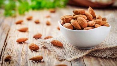 Photo of Tutto sulle mandorle, tra i semi oleosi più preziosi e salutari
