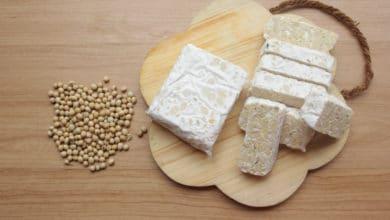 Photo of Guida al tempeh, ricette, valori nutrizionali e tutte le proprietà