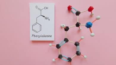 Photo of Fenilalanina: perché questo aminoacido è così importante