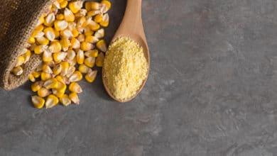 Photo of Quello che c'è da sapere sulla farina di mais, una delle farine più popolari