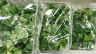 Photo of Le insalate pronte in busta: come sono pulite e quali sono i rischi?