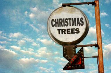 Un albero di Natale fai da te: in materiale riciclato, in cartone, in plastica…