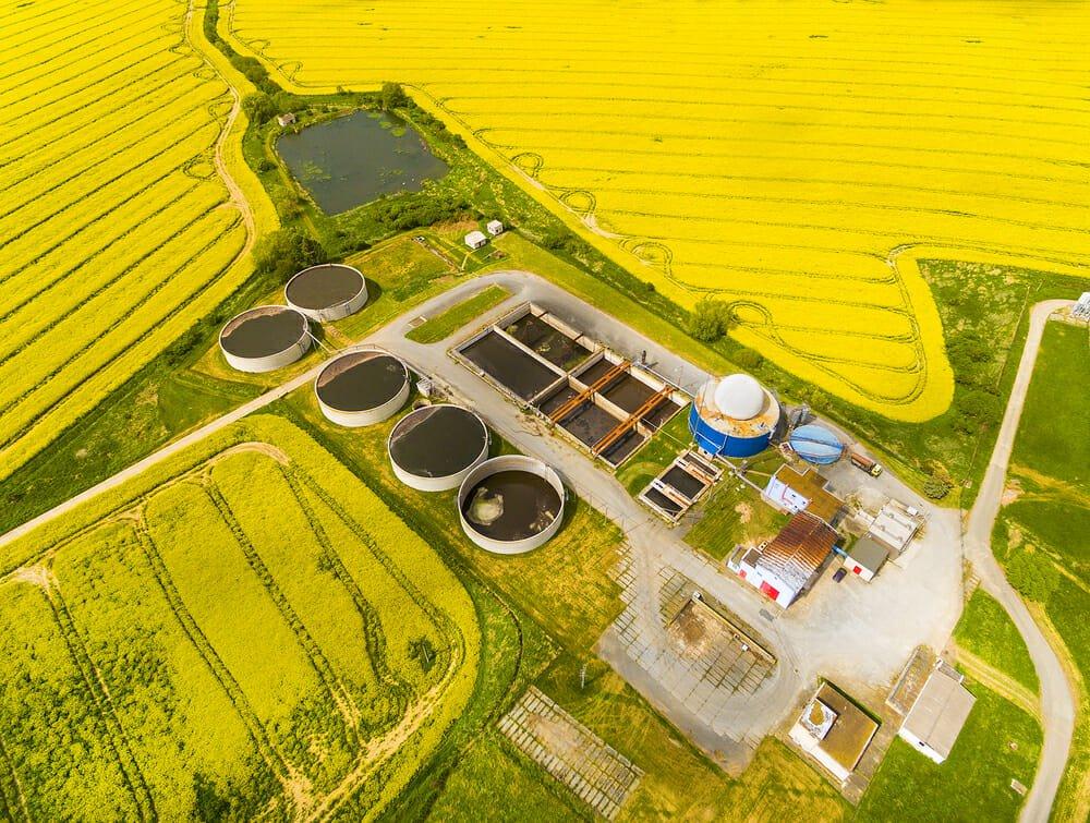 Photo of Cosa sono le biomasse e come vengono trasformate in energia: vantaggi e svantaggi