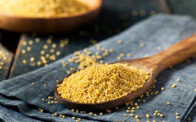 Miglio: proprietà e ricette con questo cereale