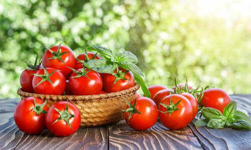 Pomodoro propriet e utilizzi in cucina e in cosmetica for Piante classificazioni inferiori successive
