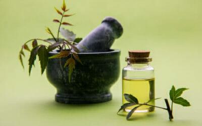 Origine, proprietà ed utilizzi dell'olio di Neem: impariamo come conservarlo ma anche le controindicazioni