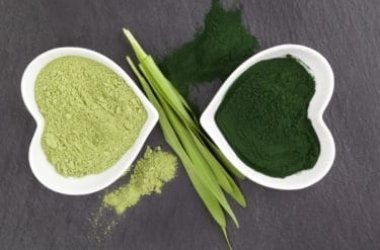 Clorella: l'alga blu-verde