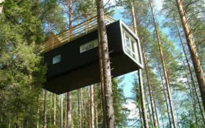 Un albergo sugli alberi: il Tree Hotel di Harads in Svezia e le stanze-nido sugli alberi