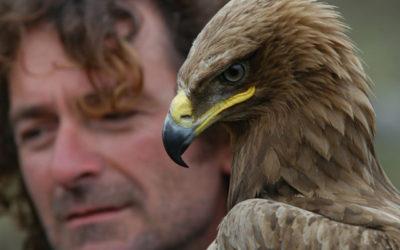 Angelo D'Arrigo, l'uomo che fece volare di nuovo i condor
