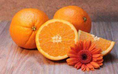 Vitamine: un approfondimento su natura e funzioni di queste sostanze