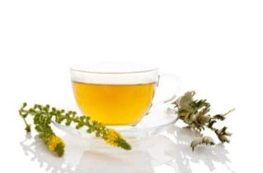 Agrimonia eupatoria, tutte le proprietà curative