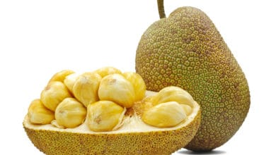 Photo of Jackfruit: sapore, proprietà e utilizzi