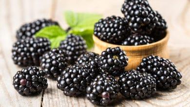 Photo of Le more, frutti ricchi di benefici per la nostra salute: utilizzi e ricette