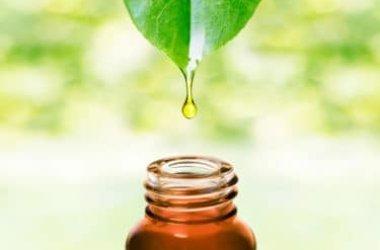 Tutto sugli oli essenziali fai da te: ingredienti e tecniche di fabbricazione