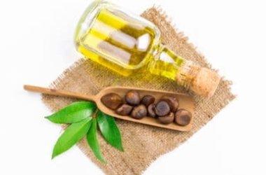 L'olio di camelia, un alleato naturale per la bellezza di pelle e capelli