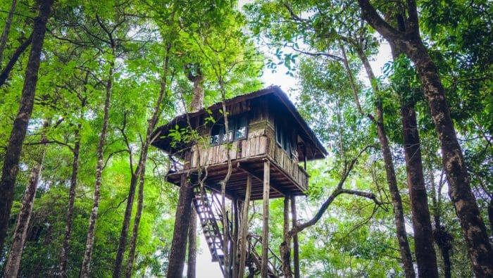 casa sull albero