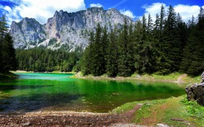 Il Lago Verde: un parco sommerso dall'acqua in Austria