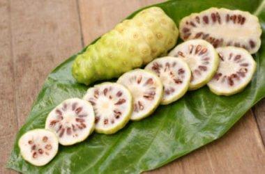Noni, la pianta tahitiana magica per la pelle e antiossidante