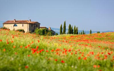 Agriturismo Toscana: ecco le migliori strutture biologiche della regione