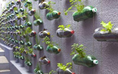 Installazioni di verde verticale, super cheap ma d'effetto!