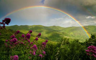 Colori arcobaleno: quali sono e loro significato
