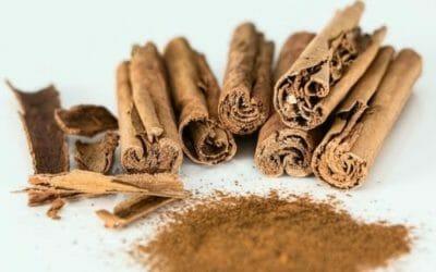 Olio essenziale di cannella: tonico, antisettico e depurativo