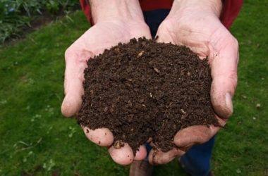 Concime organico: tutto sui metodi di fertilizzazione